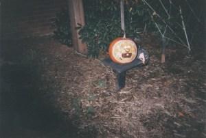 cool pumpkins carved