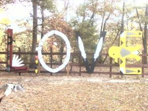 "Field trip with my 2nd grader to Wolf Creek Indian Village, Bastian, Va. 2013........ the ""O"" in 'love' is 'whole'"