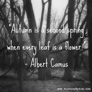Albert-Camus-Quote